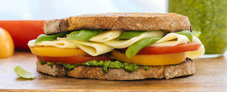 Simple cheese sandwich